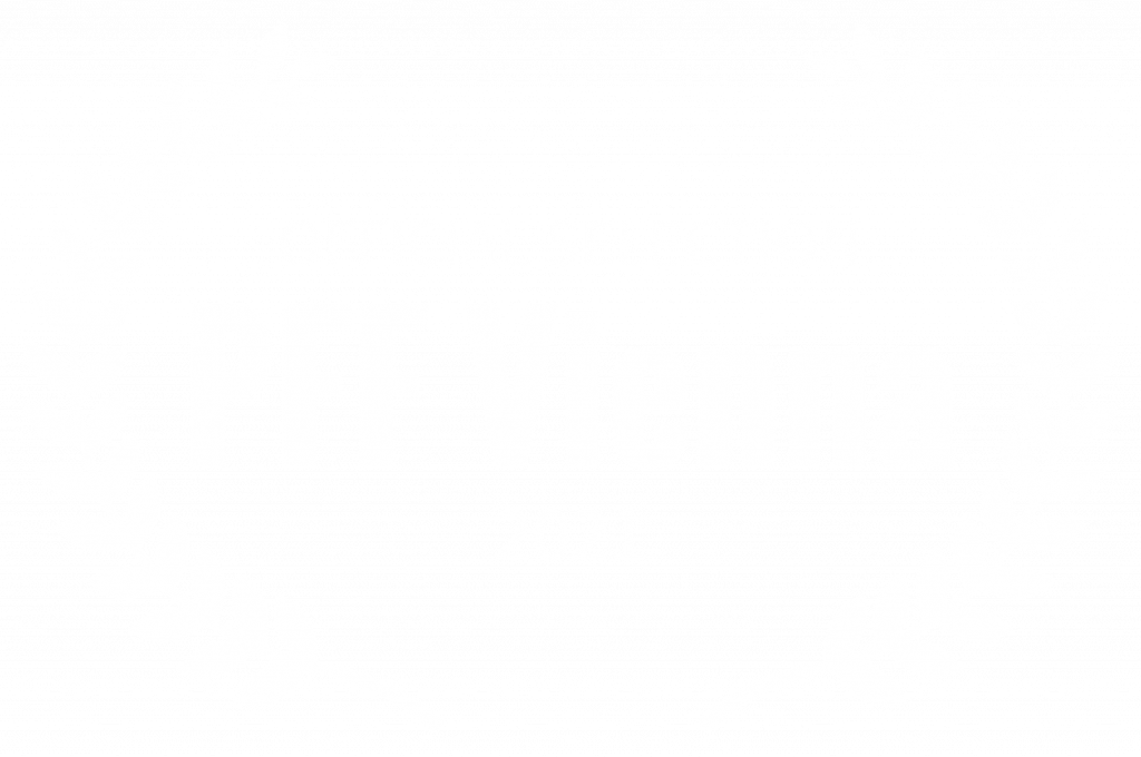 OFFICIAL SELECTION - Wild Card at PFF Vienna